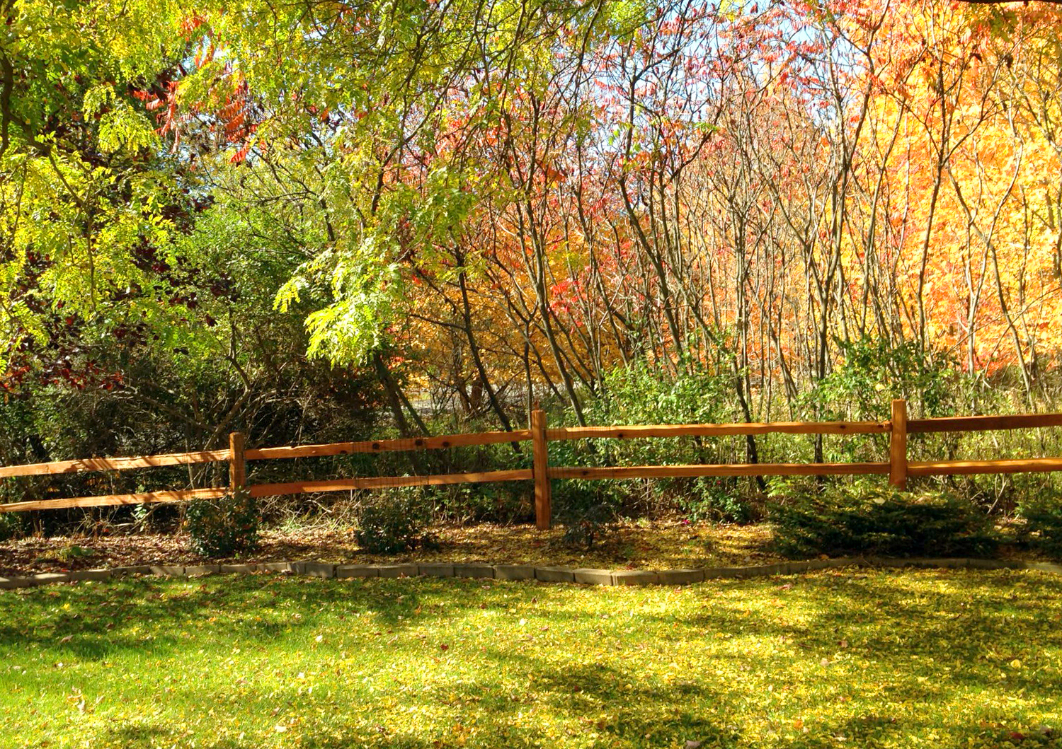 Take a walk and look around for the beauty of the outdoors - Love My DIY Home