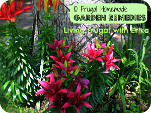http://www.livingfrugalwitherika.com/10-frugal-homemade-garden-remedies/