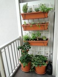 Building a Balcony Garden {Love My DIY Home}