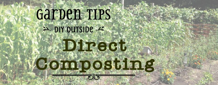 Direct Composting – Improving Garden Soil