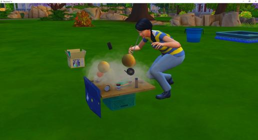 2019-01-01 21_58_51-The Sims™ 4
