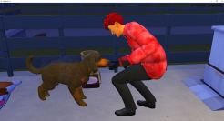 2019-01-05 15_35_44-The Sims™ 4