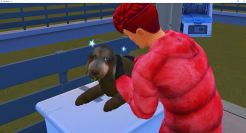 2019-01-05 15_46_21-The Sims™ 4