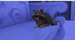 2019-02-17 16_17_04-The Sims™ 4
