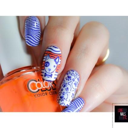 SM Orange & Blue4
