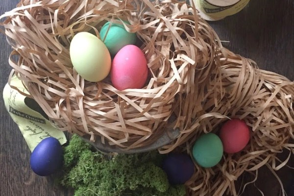 Eier färben im Thermomix