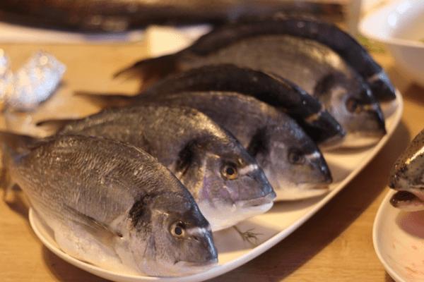 Grill – Workshop – Seafood auf dem Grill