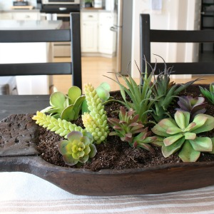 Dough bowl succulent planter 300