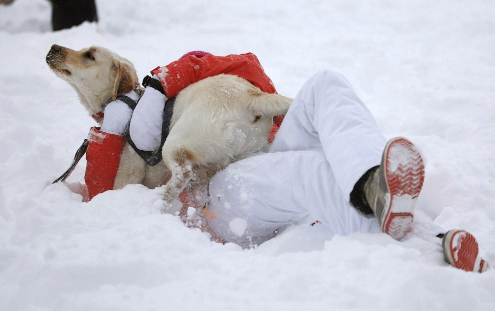 Зима в Колорадо, США