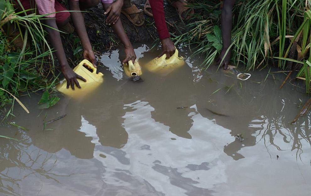 В этом районе в Кении за питьевой водой ходят на болото