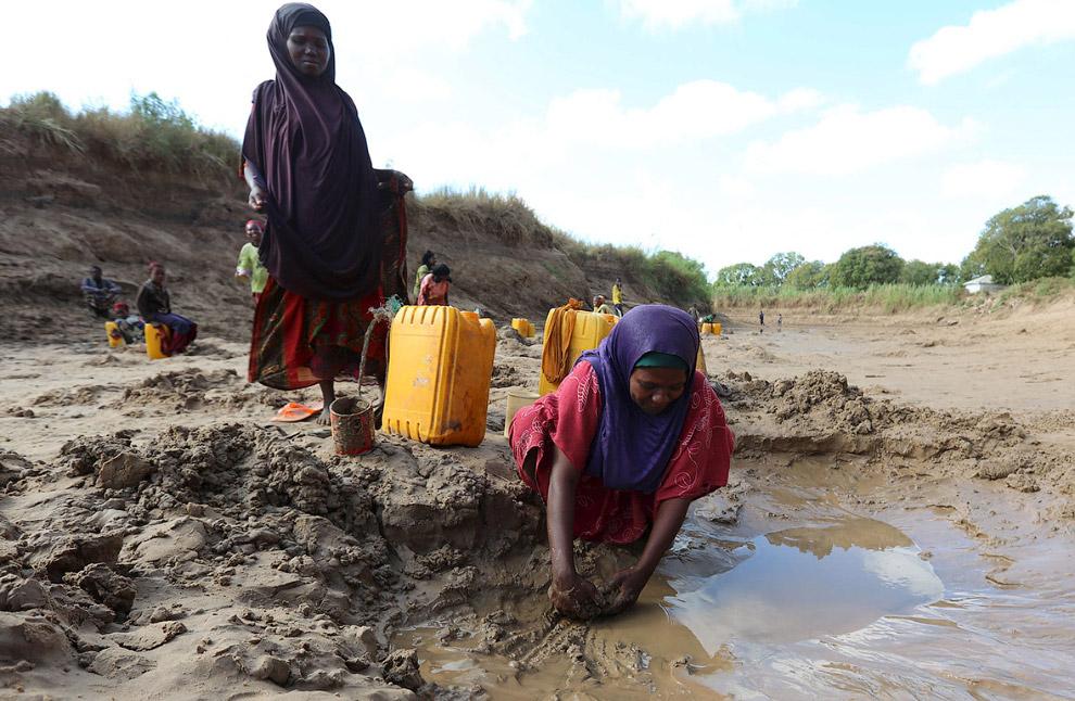 Сбор воды из лужи в Сомали