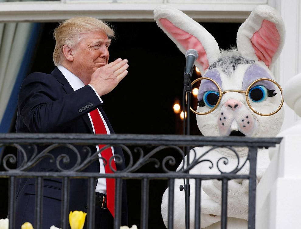 Пасхальный заяц и Трамп на балконе Белого дома в Вашингтоне