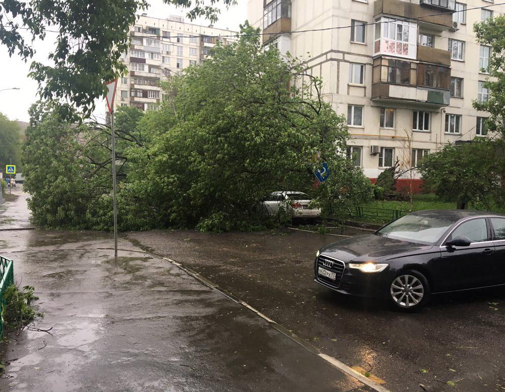Ураган в Москве 2017