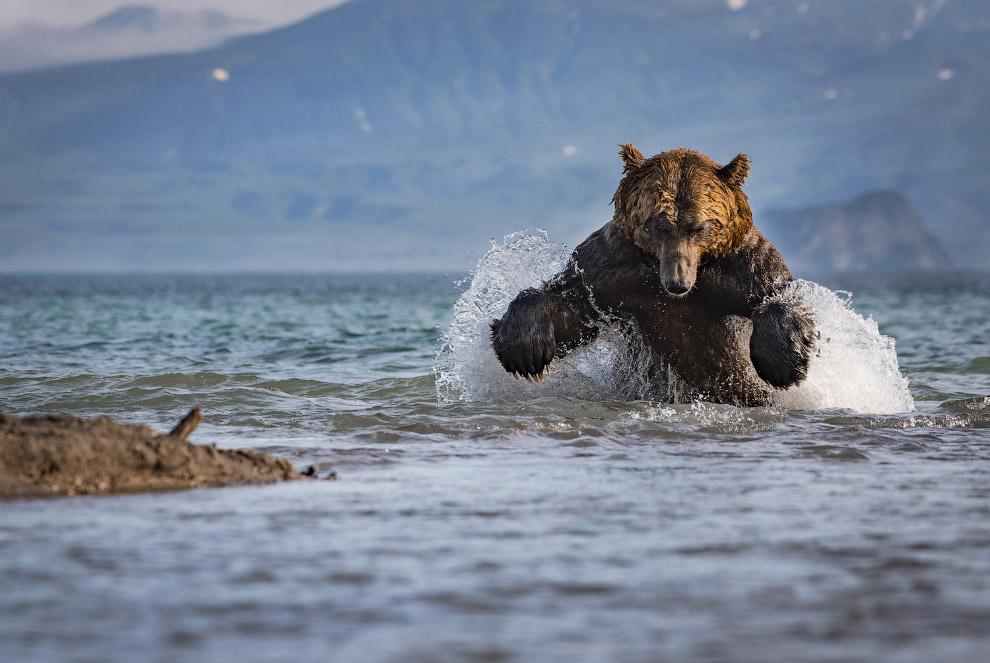Рыбалка на курильском озере, Камчатка