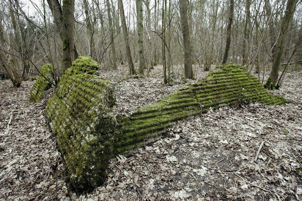 Останки бункера времен Первой мировой войны в Пелогерете, Бельгия