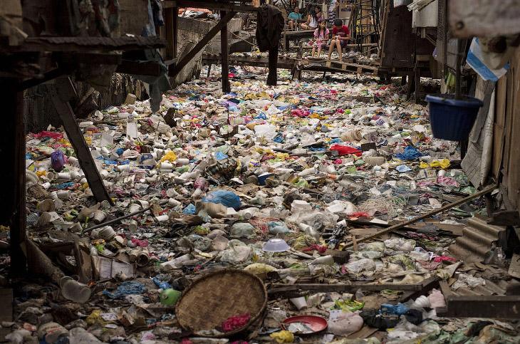 Пластиковый мир