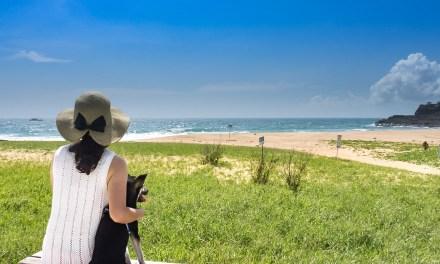 澎湖(ポンフー)のビーチを思う存分味わえる「山水ビーチ」