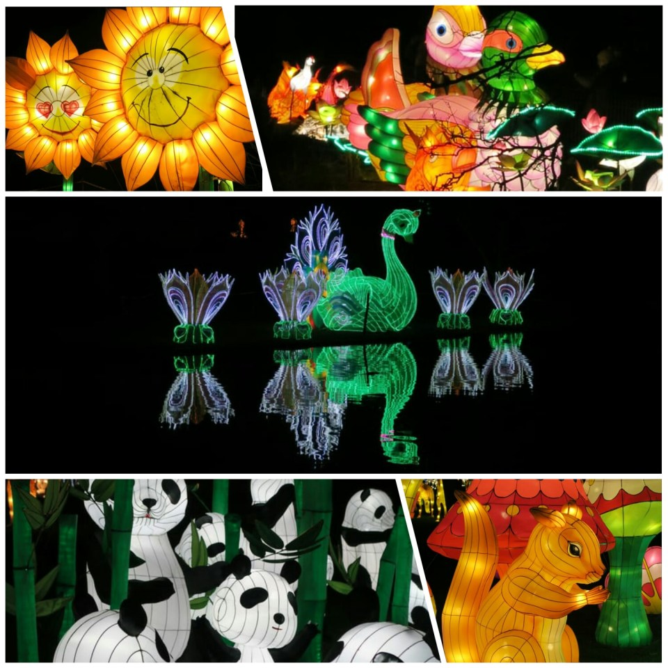 Magical lantern collage