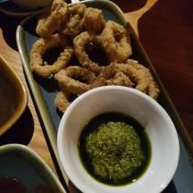 Cottons squid