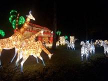 Magical Lantern Noahs Ark side view