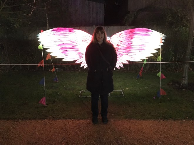Magical Lantern me and wings
