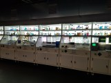 Dinos in the Wild lab