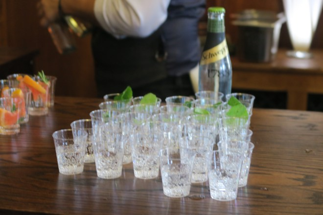 Schweppes drink 3
