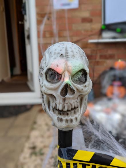Halloween 2018 skull