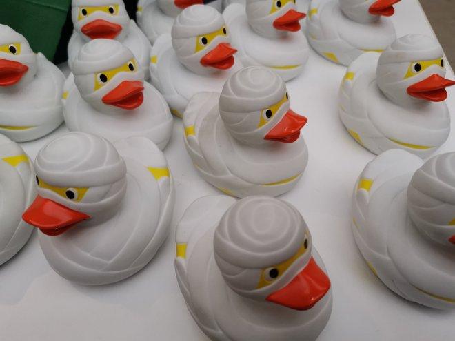 Tutankhamun ducks