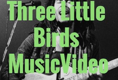 Three Little Birds Music Video