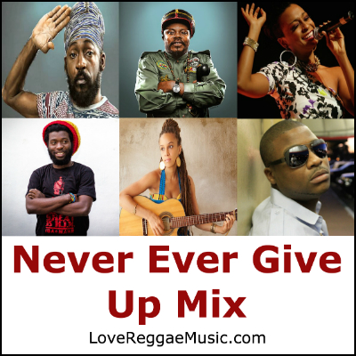 Never Ever Give Up Mix (400)