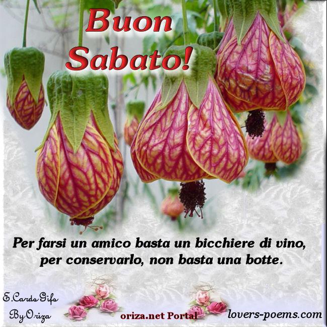 ITALIANO Buon Sabato Ti Voglio Bene! Oriza Net Portal