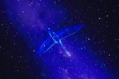 """コニカミノルタプラネタリウム""""天空"""" in 東京スカイツリータウン"""
