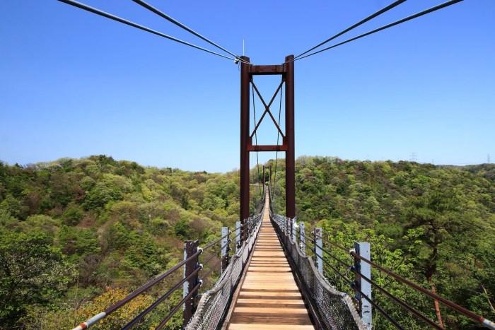 ほしだ園地の吊り橋