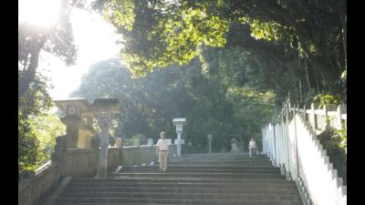 こんぴらさんのきつい階段