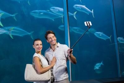 水族館デート 自撮りをする人達