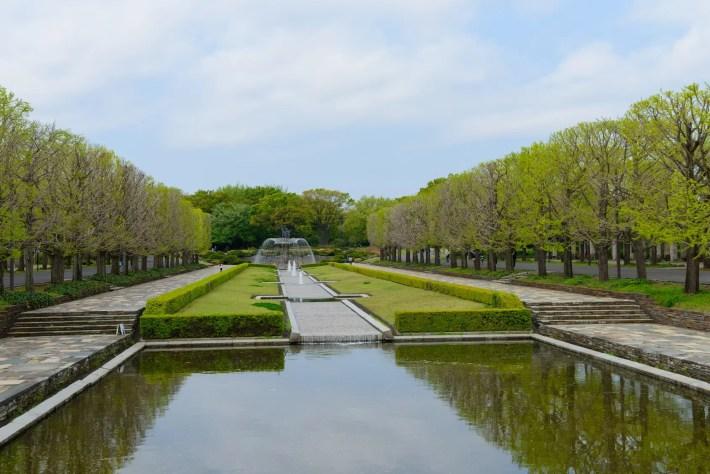 東京 立川 春の昭和記念公園