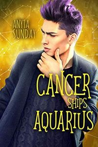 Gay Romance Novels Cancer Ships Aquarius by Anita Sunday