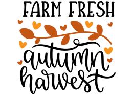 Farm fresh autumn harvest