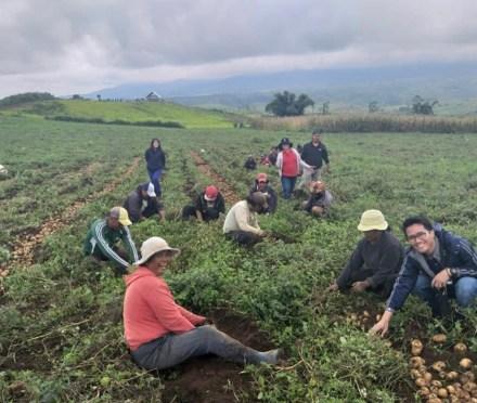 United Potato Cooperative