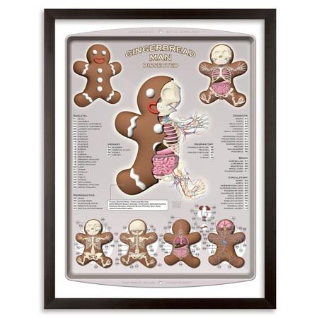 1xRUN-Jason-Freeny-Gingerbread-Dissected-16x22-WEB01-1