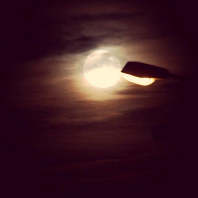 Donderdagavond werden we getrakteerd op deze mooie volle maan!