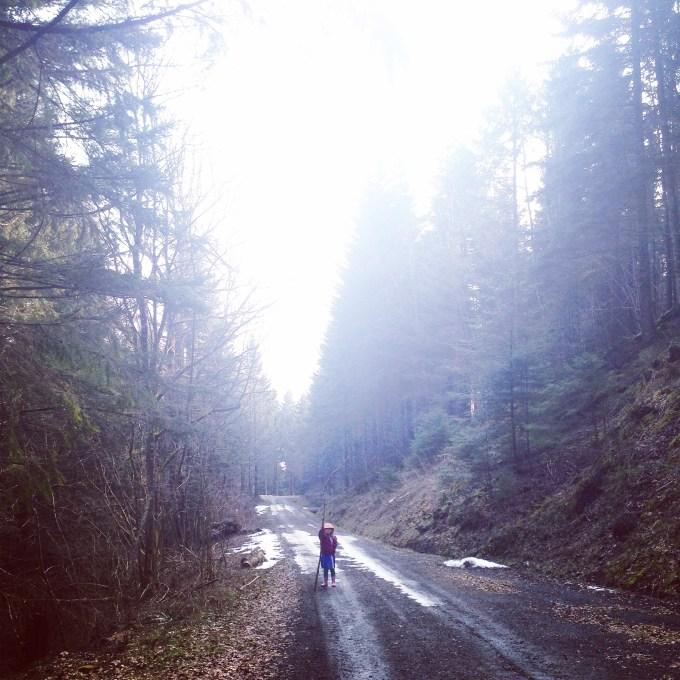 Zaterdagochtend begonnen we met een gezellige, maar koude wandeling in het bos.