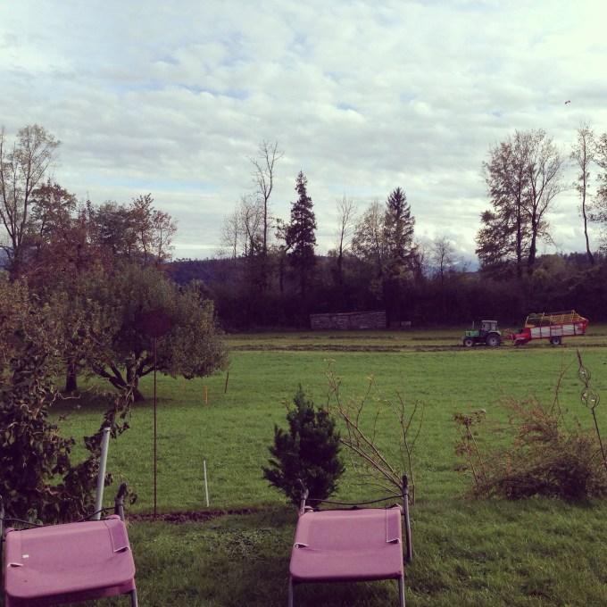 Na een middagdut waren we weer bij de buren. Ze hebben zo'n fijn uitzicht. Op de achtergrond; eva in de tractor