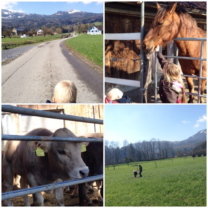 Het is mooi weer en dus vertrekken we naar buiten. Mooie uitzichten. knuffelen met de paarde, jonge koeien bekijken en Eva mocht de boerin helpen op het land!