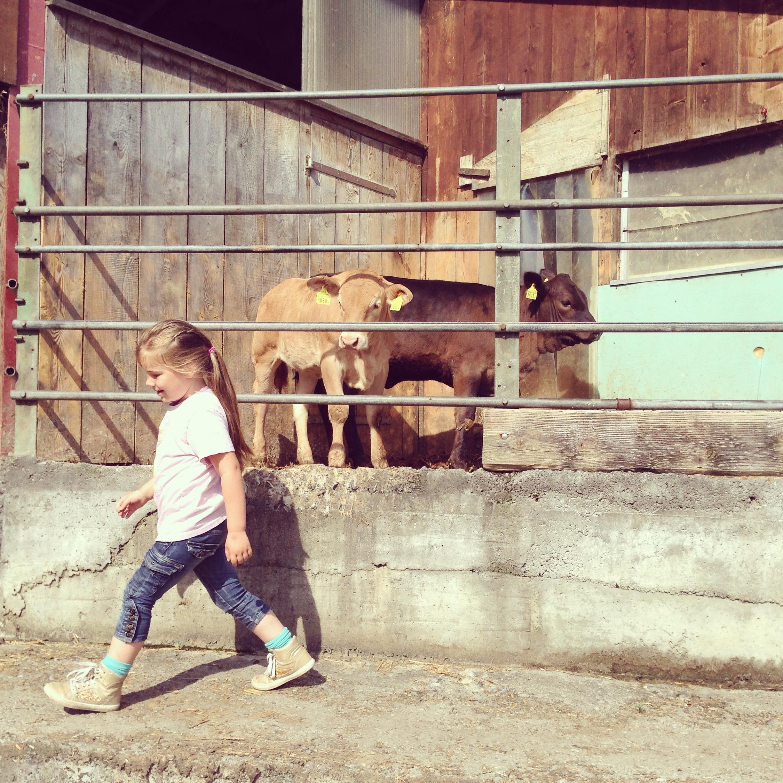Eva vond de kleine stieren toch wat stoerder