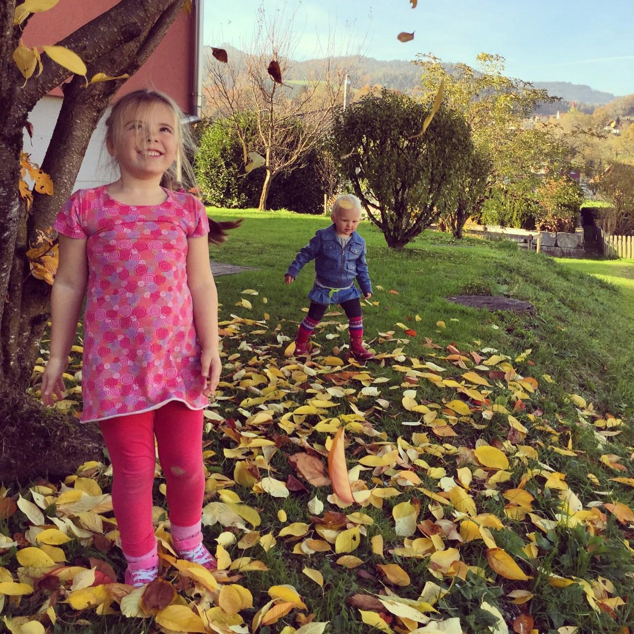 Woensdagmiddag speelden we met de bladeren van de boom van de buurman