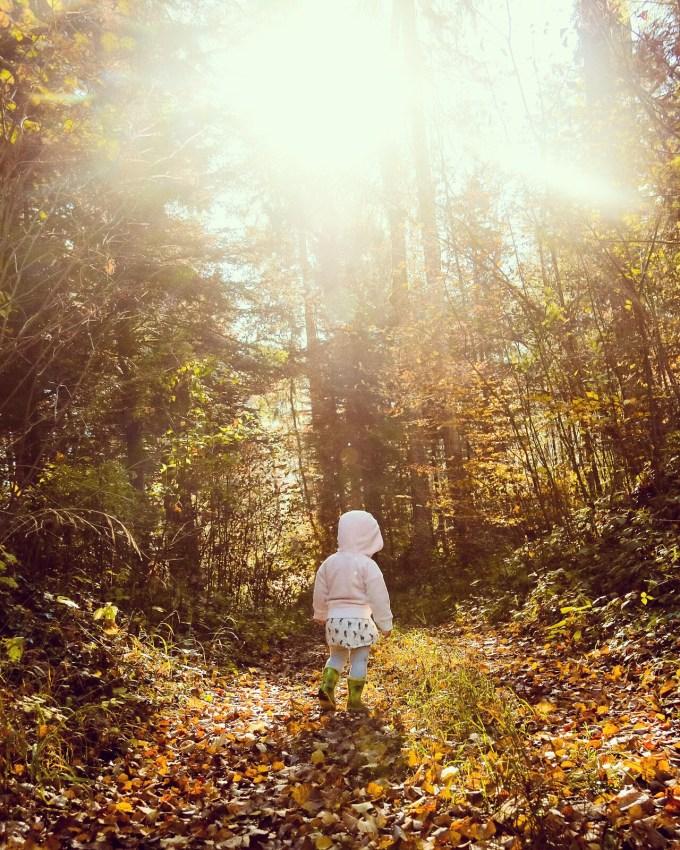 We lopen door het bos (check hier de andere foto's)