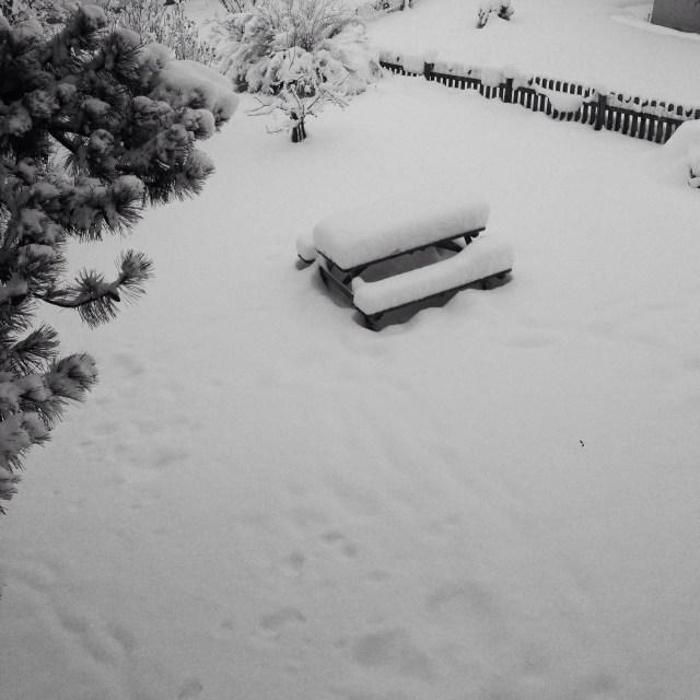 In de nacht van maandag op dinsdag was er nog meer sneeuw gevallen!