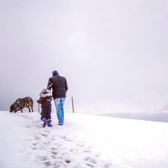 Zaterdagochtend begonnen we met een kleine wandeling op onze berg